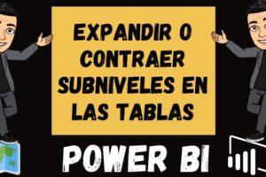 EXPANDIR o CONTRAER subniveles en las tablas de Power BI